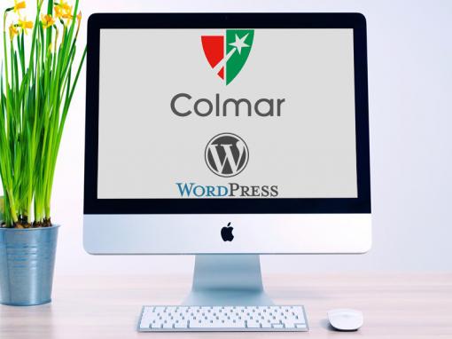Colmar Projet WordPress développement