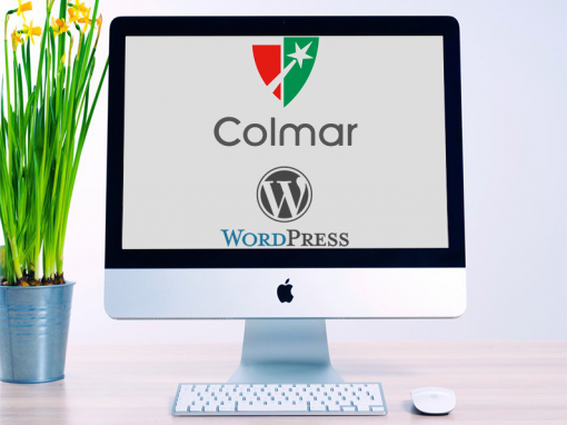 Colmar Project WordPress development