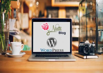Niatti Blog WordPress development