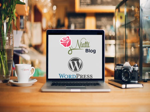 Niatti Blog WordPress development