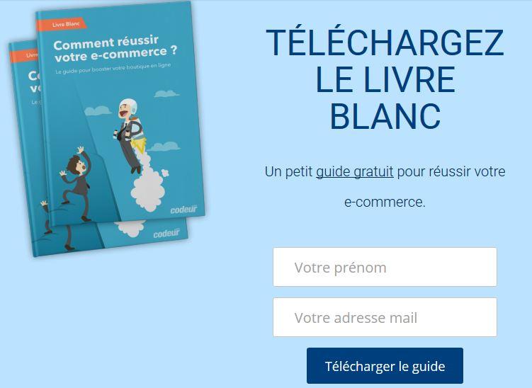 livre blanc Comment réuissir votre e-commerce