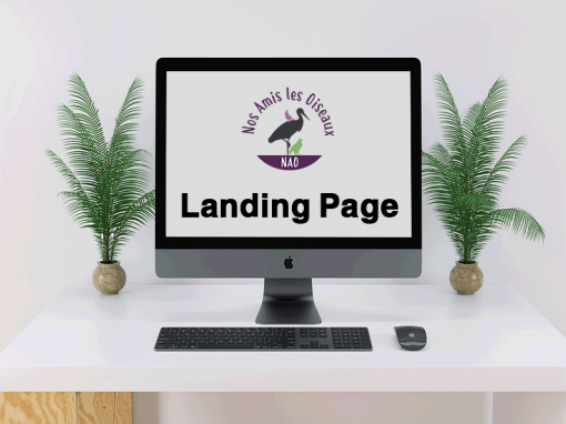 Landing Page Website NAO